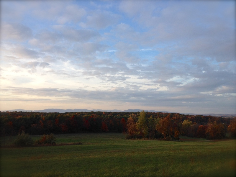 Looking out toward Lake George and the Adirondacks from the back field of my farm