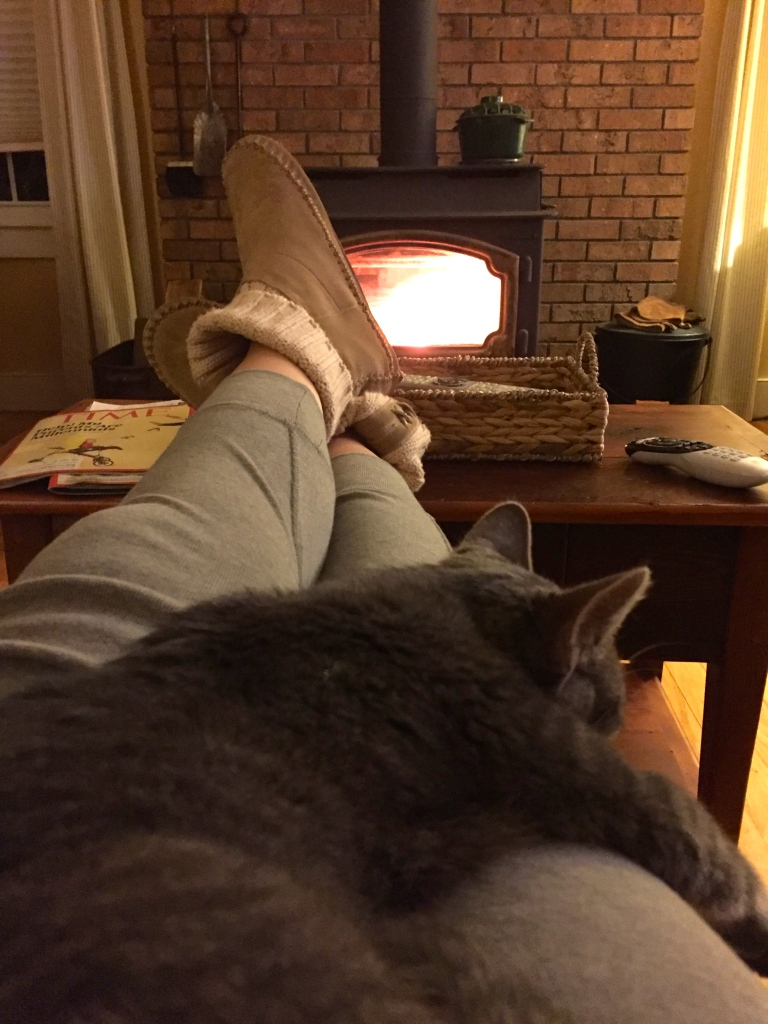 There is nothing quite like the warmth and comfort of having a fire on a cold winter night. Here my cat Clark and I sit by the woodstove, enjoying the first of many fires to come.