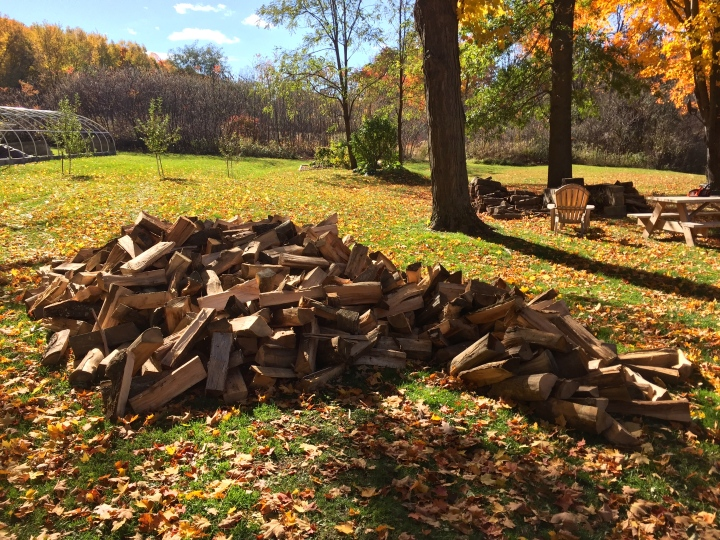 Although there is plenty of cut wood around here available, I get some delivered each year to mix in with my own.