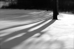Snow shadows
