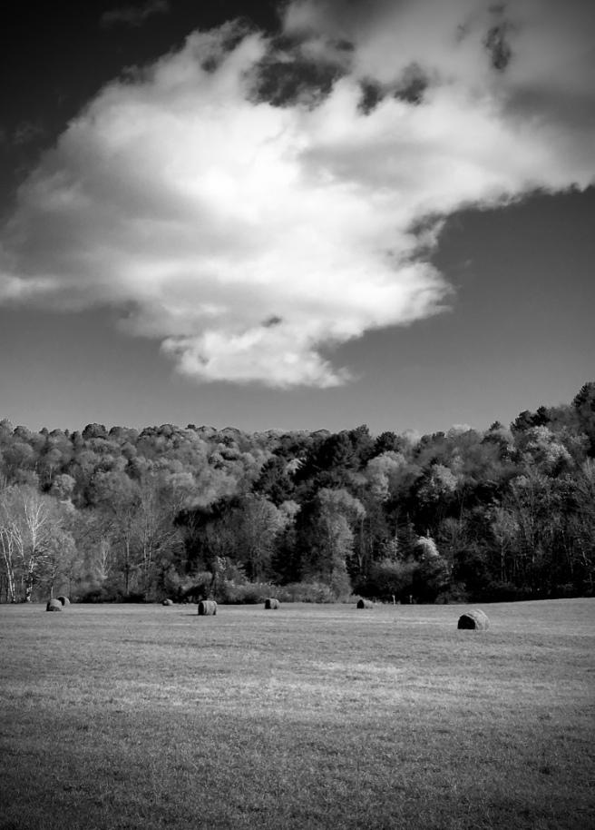 autumn-fields