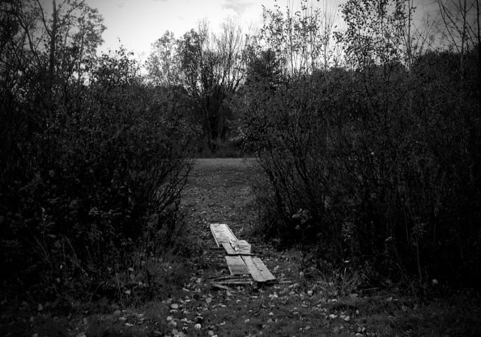 the-path-not-taken