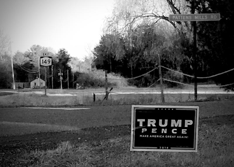 trump-nation